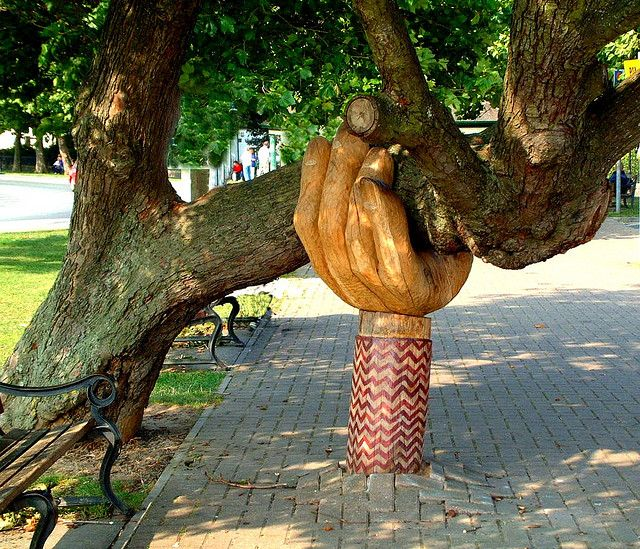 The old tree was falling down and the Town Council in their wisdom decided to fell it. But the people of Bideford had different ideas and rose up in rebellion against their council. In the end a local sculptor came to the rescue and sculpted a helping hand to hold the tree up, and the Council held off with their plans to fell it.