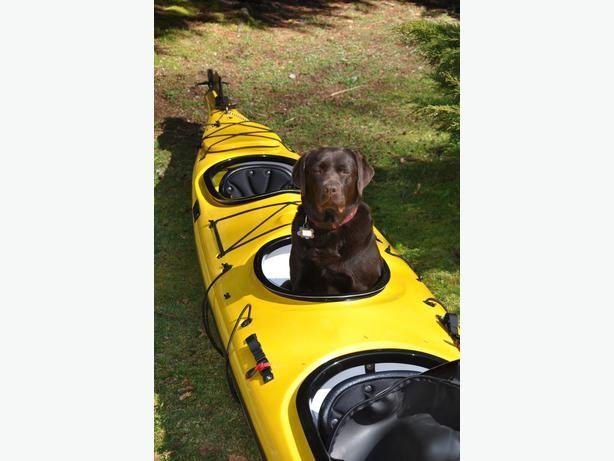 Seaward Passat G3 Double/Triple Kayak - Two available