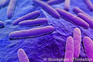 New study suggests that there are three distinct types of gut bacteria, which could explain why there are three Nutritional Types. http://articles.mercola.com/sites/articles/archive/2011/05/15/turns-out-bacteria-in-your-gut-divides-people-into-three-groups.aspx