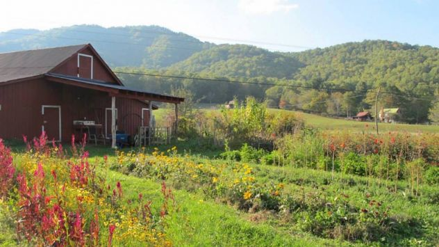 """Ronni Lundy's """"Victuals"""" reveals the brilliance of Appalachian food. Recipe for killed lettuce."""