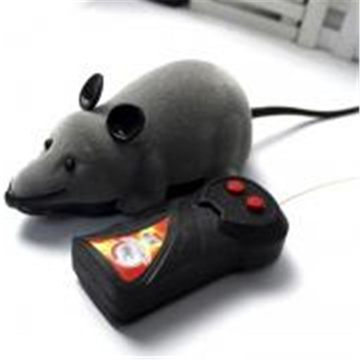 BUY now 4 XMAS n NY. Hot selling New Black White Funny Pet Cat mice Toy Wireless RC Gray Rat Mice Toy Remote Control mouse For kids toys freeshipping -- Shop 4 Xmas n 2018. Just click the image to find out more on  AliExpress.com.