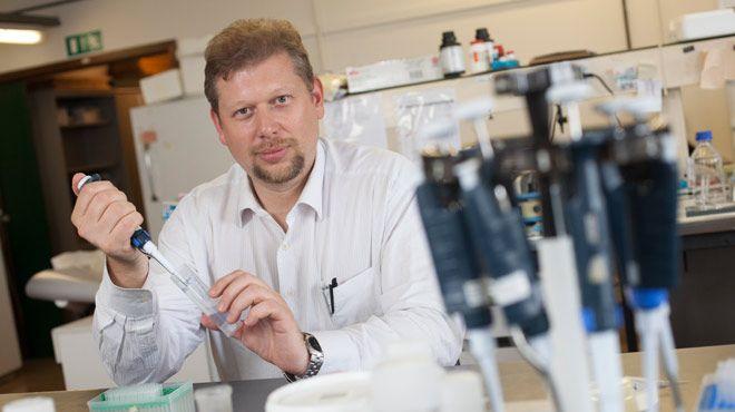 L'équipe du chercheur de l'Université catholique de Louvain (UCL) Pierre Sonveaux a «validé» une molécule capable de prévenir les métastases.
