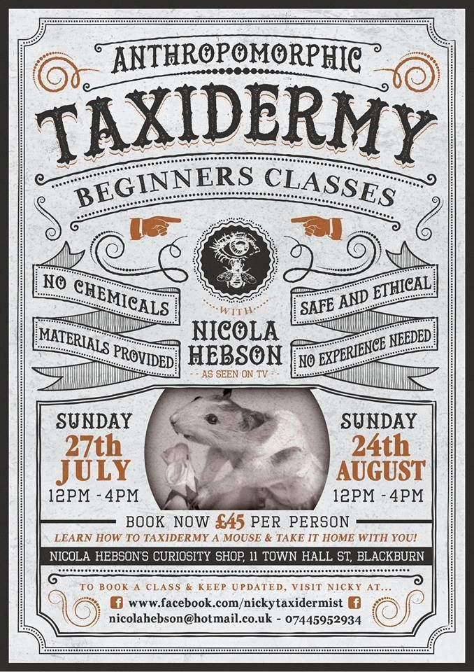 #taxidermy #roadkill #demonstrations