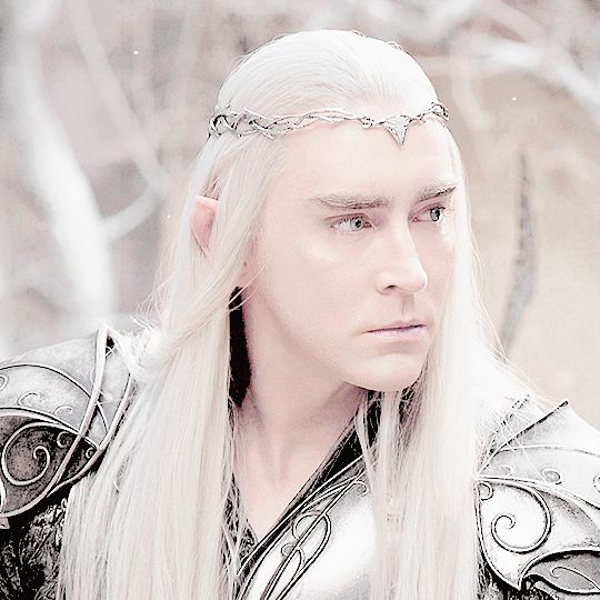 """bookception: """" Thranduil, the Elvenking, was a Sinda and King of the Silvan Elves of Mirkwood in the Woodland Realm.  """""""