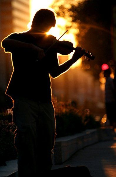 violin at sunset