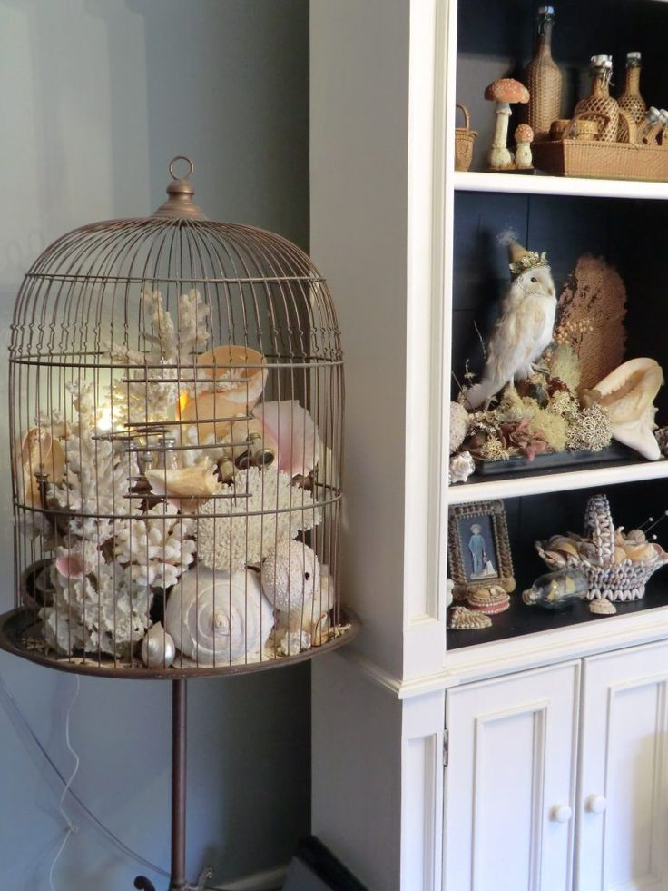 shell cage