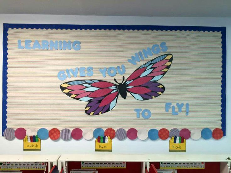 Butterfly Classroom Decorations : Best images about bulletin boards on pinterest