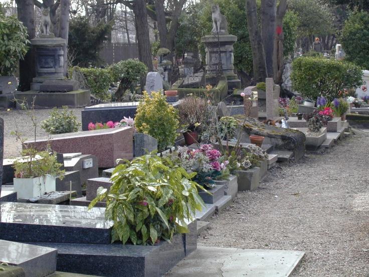 Le Cimetière des Chiens (El Cementerio de los Perros)  es el cementerio más antiguo del mundo dedicado exclusivamente a mascotas.