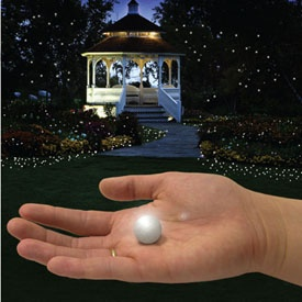 Fairy Berries - Tiny glowing on and off orbs make your back yard look magical!
