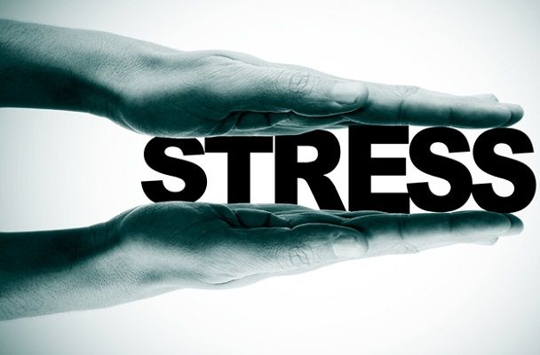 Excessive stress can cause white fat cells to change into brown fat #Burning, #Cells, #Energy