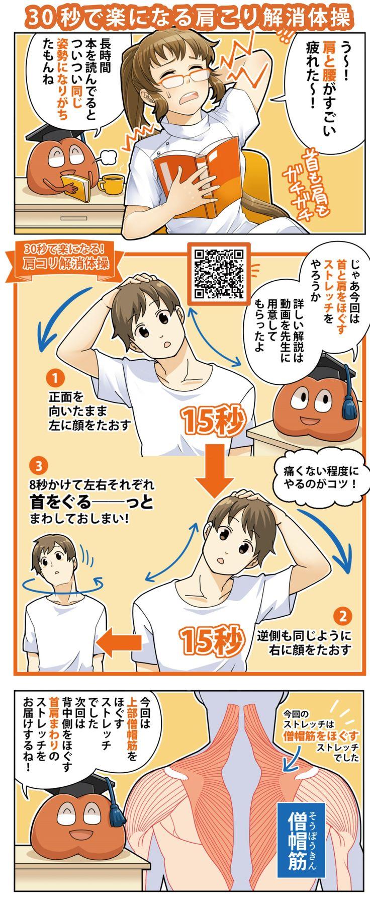 【30秒で肩こりスッキリ】どこでもお手軽♪肩こり体操の方法 #肩こり #shoulder #Health