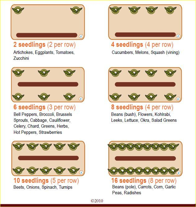17 best images about gardening and canning on pinterest gardens trees and raised beds - Spacing planting vegetables guide ...