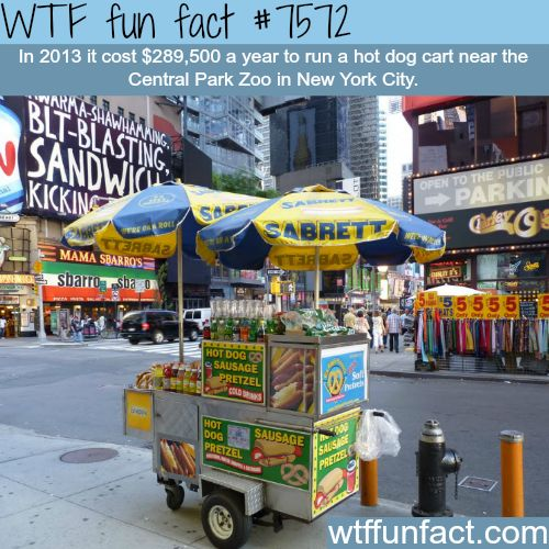 How much it cost to run a hot dog car in NYC? – WTF fun facts – Irwin Fletcher