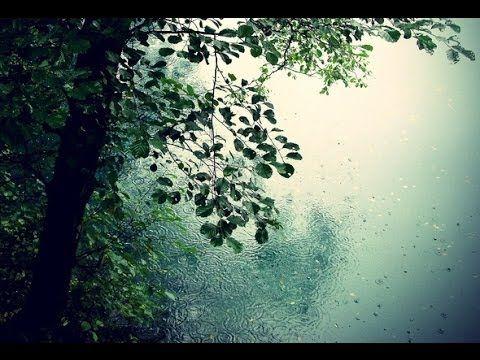 9 HOURS of Relaxing Music with Gentle Rain - Sleep, Spa, Work, Meditation