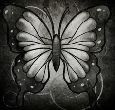 How to Draw a Black Butterfly, Step by Step, Bugs, Animals, FREE Online Drawing Tutorial, Added by Dawn, March 11, 2014, 2:34:23 pm