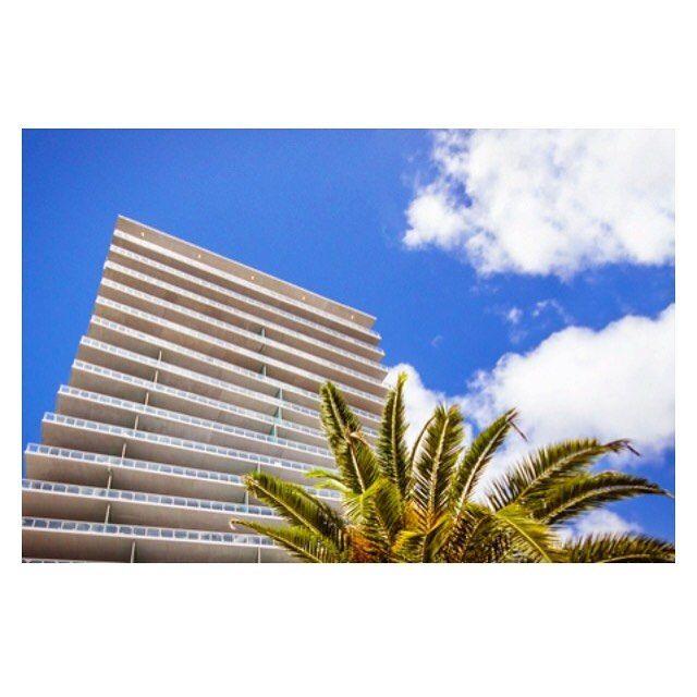 #картины для интерьера. #фотографии на стену #friedpic #miami #palm #tree #beautiful #sky #canvas #art  #подарок #продажа