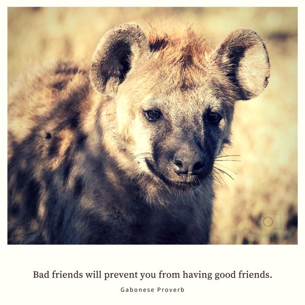 Bad friends will prevent you from having good friends. – Gabonese Proverb