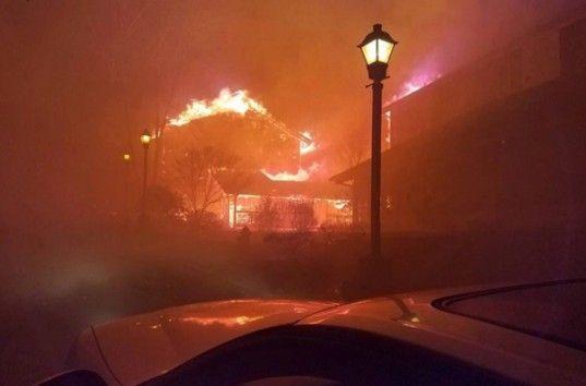 В штате Теннесси в результате лесных пожаров погибли 11 человек (ВИДОЕ)