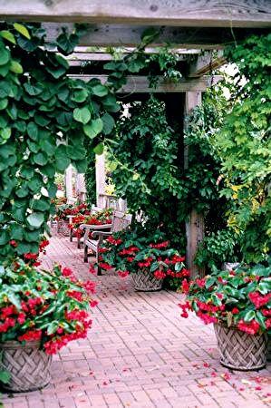 Allen Garden by _minette