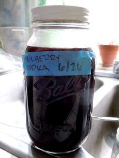 Mulberry Liqueur - no amounts, just basic recipe - fresh mulberries
