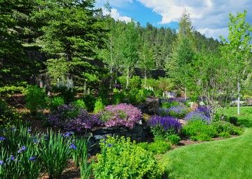 Garden Ideas Colorado 117 best colorado style landscape design images on pinterest