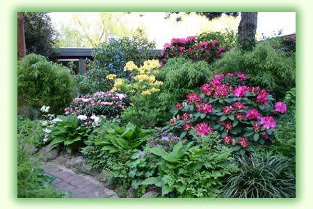 34 best Vorgarten, Nordseite images on Pinterest | Garten gestalten ...