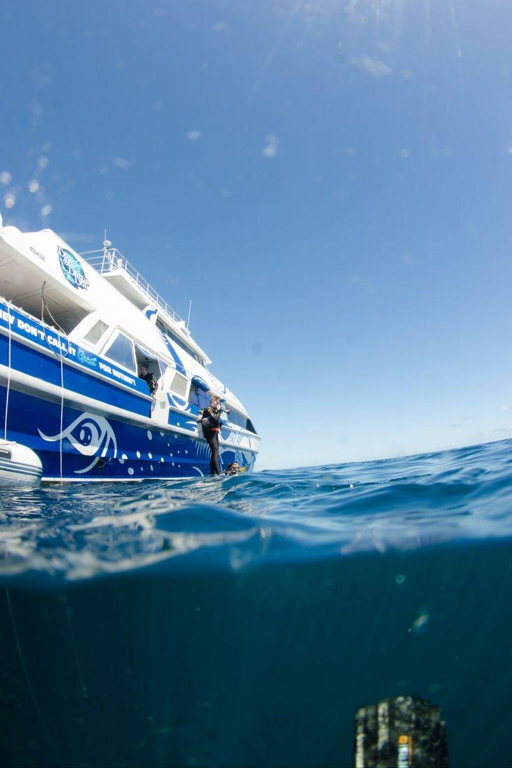 Wicked split shot of a scuba diver on the #GreatBarrierReef