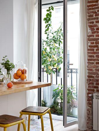 1000 idées sur le thème Sichtschutz Fenster sur Pinterest ...