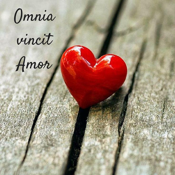 """Tratto dal libro: """"Amore e sesso nell'antica Roma"""" di Alberto Angela --- L'Amore vince su tutto, Love wins over all, amore, cuore, rosso, heart, red, quotes, Virgilio, latino"""