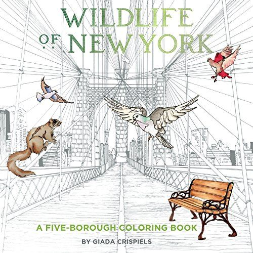 Wildlife Of New York A Five Borough Coloring Book By Shannon Connors