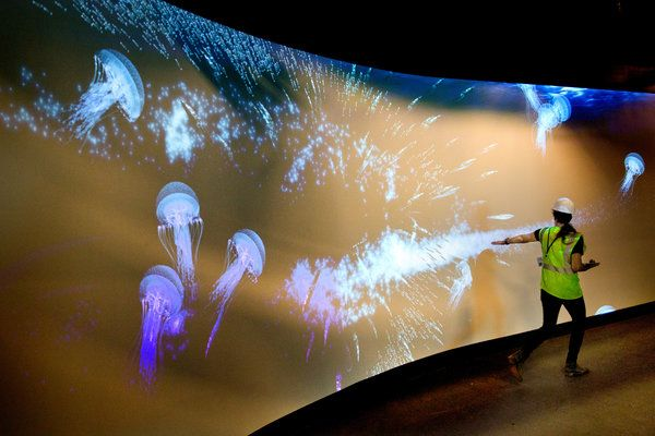 The Virtual Gulf Stream Aquarium was the first of the two ground-breaking, large-scale audio visual interactive wall and floor installations commissioned for the museum of the future: The Patricia and Philip Frost Museum of Science in Miami, Florida. The augmented reality exhibit gives visitors an unforgettable walk-through experience of the Gulf Stream and its aquatic inhabitants.