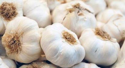 manfaat bawang putih untuk kecantikan,bawang putih untuk rambut,bawang putih lanang,bawang merah,bawang putih untuk jerawat,bawang putih tunggal,bawang putih untuk wajah,