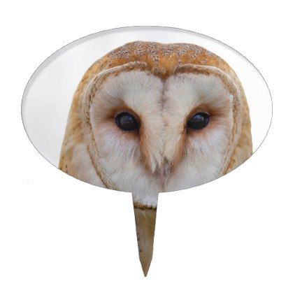 White and Brown Owl Cake Topper - barn gifts style ideas unique custom