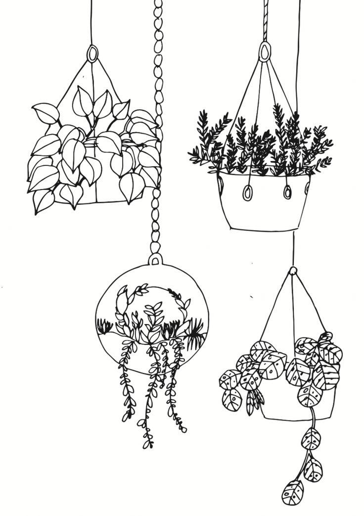 Pflanzen zeichnen für Anfänger   Blumenzeichnung, Zeichnen ...