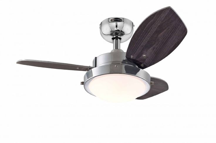 Westinghouse Wengue 30'' Chrome Ceiling Fan- 78763: Amazon.in: Home & Kitchen