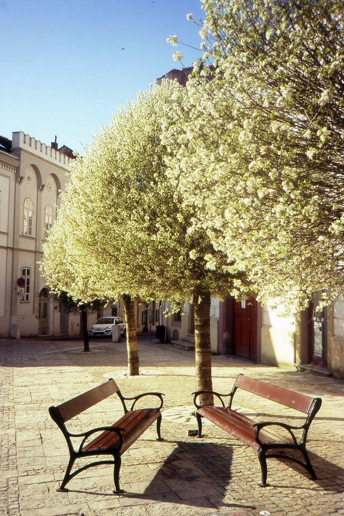 Pecs, Hungary | by © .e.e.e. | via allthingseurope
