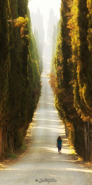 Italy - Beautiful Path Surrounded by nature