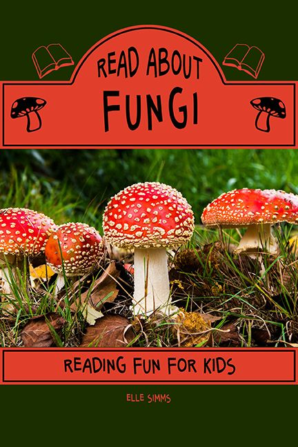 Are you curious about nature? Delve into the mysterious world of fungi! Learn more about mushrooms, toadstools, mold and more in Read About Fungi.   Read About Books are educational children's books designed to inspire your young reader to learn about their favorite subjects while practicing their reading skills.   Read About Fungi is a suitable reading level for grades 1-3. KINDLE e-book available.  GET YOUR COPY NOW! Click the picture!