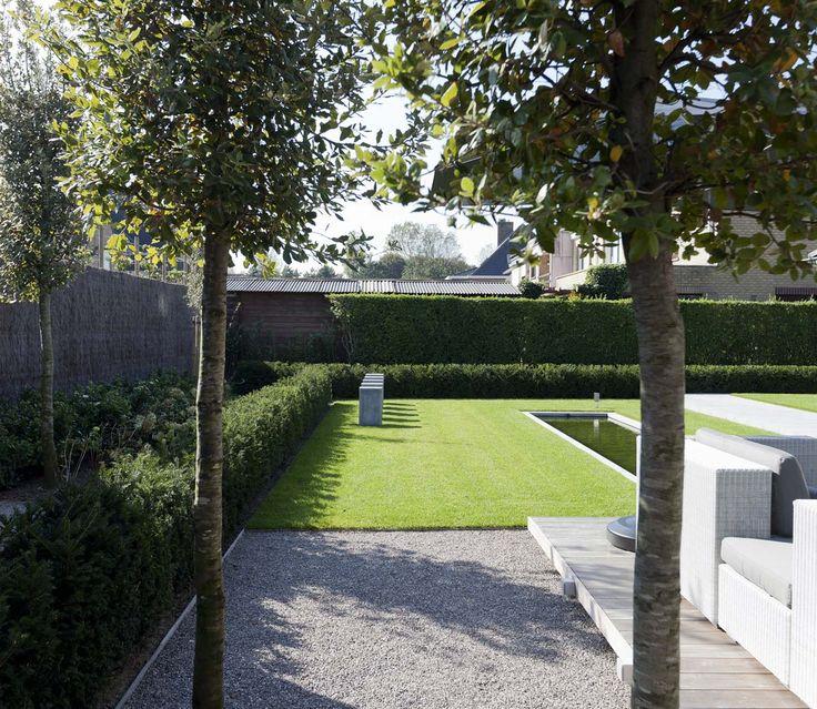 Grote strakke tuin met minimalistisch design.