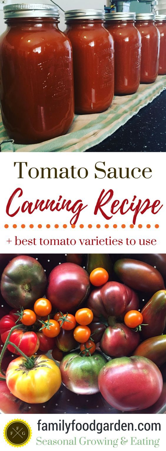 Canning tomato sauce is a great way to preserve your tomatoes. This canning tomato sauce recipe is from the Bernardin Canning Guide that came with the home canning kit that we purchased when we started canning 8 years ago. Since then we've got a glass stove top and have to use a flat bottomed canning