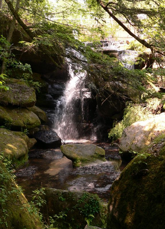 32 best images about dismal canyon on pinterest alabama for Landscaping rocks tuscaloosa al
