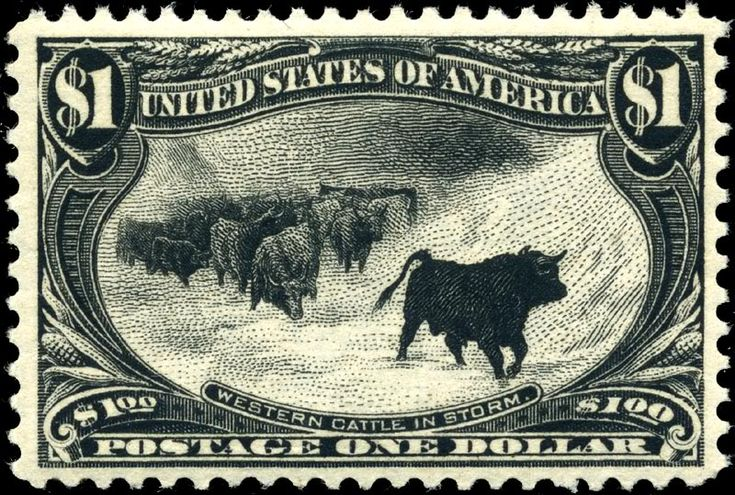 Trans-Mississippi Issue: Western Cattle in Storm