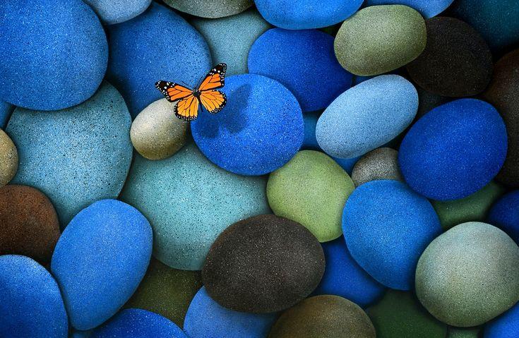 خلفيات كمبيوتر ثلاثية الأبعاد 3d Wallpapers Desktop Backgrounds Tecnologis Butterfly Wallpaper Blue Butterfly Wallpaper Stone Wallpaper