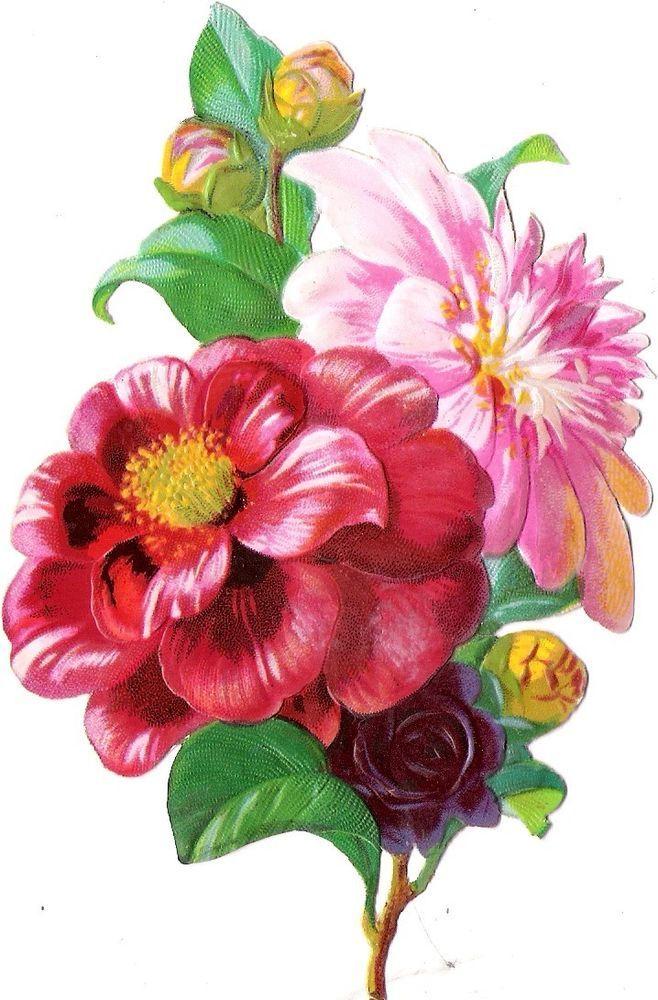Oblaten Glanzbild scrap die cut chromo Blume  14,3 cm  flower fleur