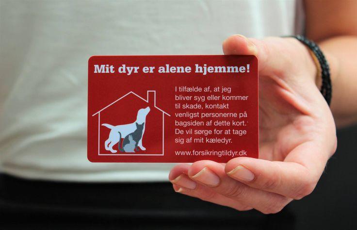 """Dyrenes Redningskort. """"Mit dyr er alene hjemme!"""". Kan købes her: https://kildyr.dk/produkt/dyrenes-redningskort/"""