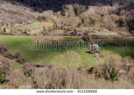 country glade in Abruzzo