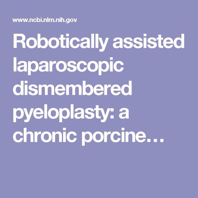 Robotically assisted laparoscopic dismembered pyeloplasty: a chronic porcine…