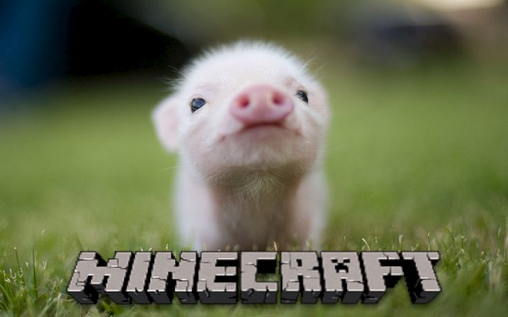 Pig - Printable Minecraft Pig Papercraft Template