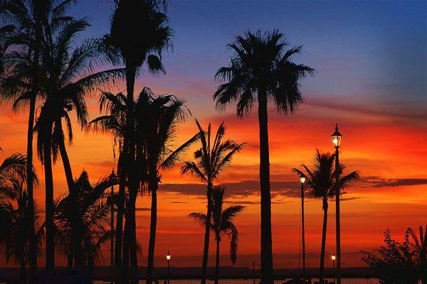 The story of sunset by paz latorena?