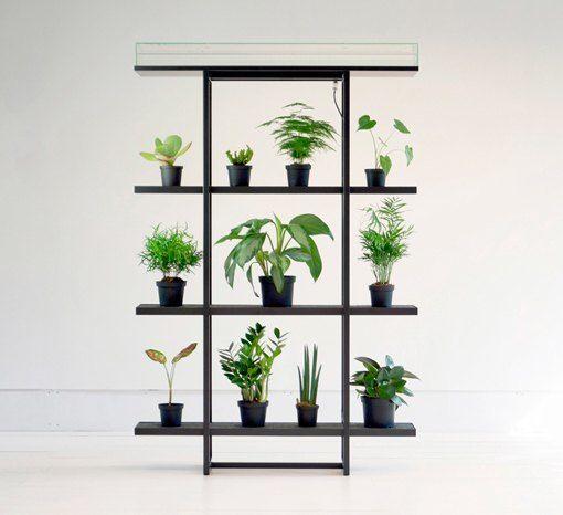 Con los sistemas de autorriego para plantas domésticas de Pika plant, podrás tener plantas todo el año floreciendo sin necesidad de regarlas.